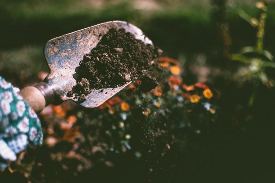 Improving Soil