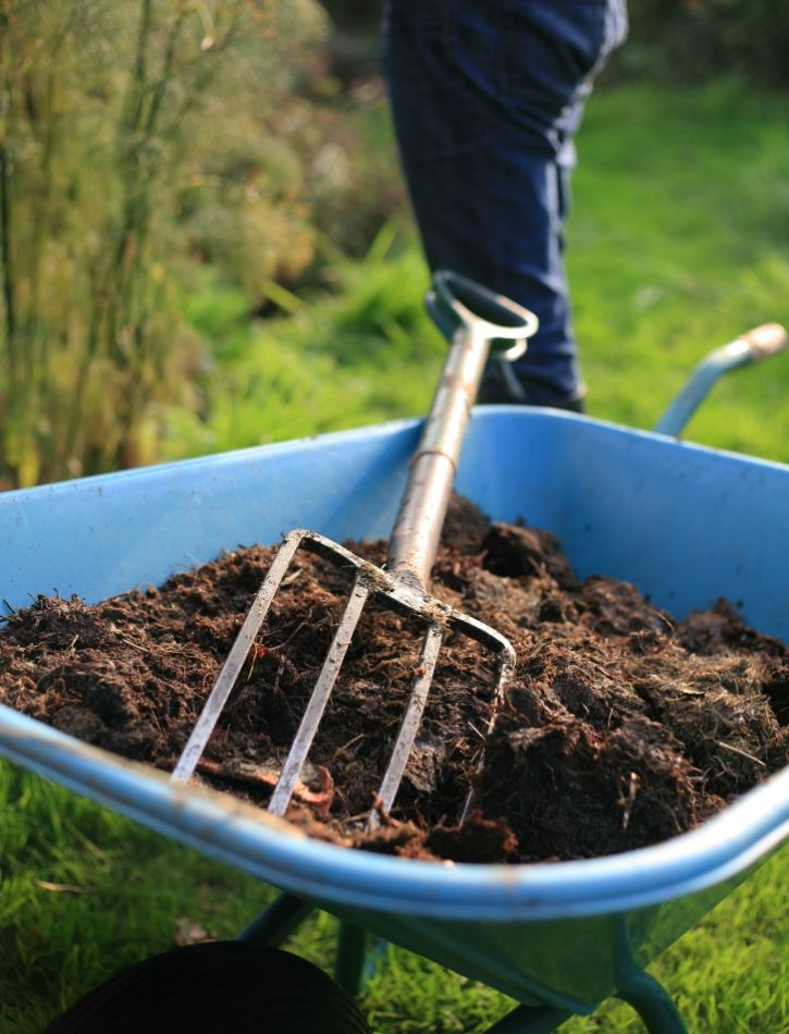 Mulching To Improve Soil Structure